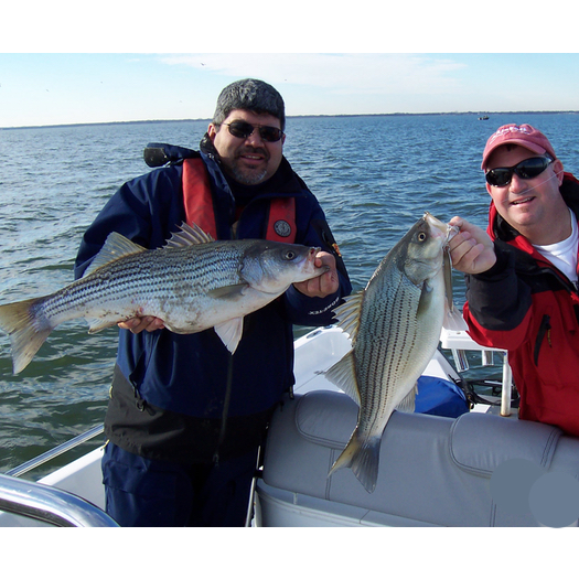 Tawakonistriperguide 5 tawakoni striper guide for Lake tawakoni fishing guides